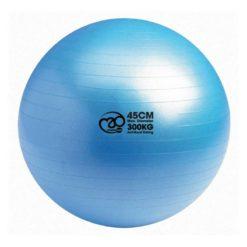Le Swiss Ball 300kg de Fitness-Mad est idéal pour les séances d'entraînement de Fit Ball