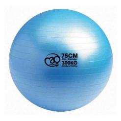 e Swiss Ball 300kg de 75 cm de diamètre de Fitness-Mad est particulèrement adapté à une utilisation intensive